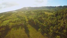 与小山的菲律宾自然 保和岛 鸟瞰图 股票视频