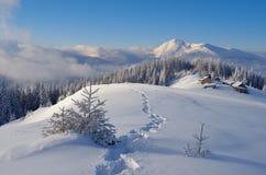 与小径的冬天风景在雪 免版税库存照片