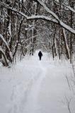 与小径的冬天风景 库存图片
