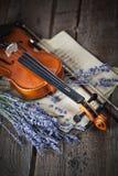 与小提琴和淡紫色的葡萄酒构成 免版税库存图片