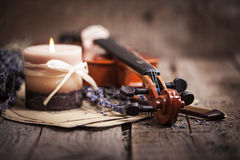 与小提琴和淡紫色的葡萄酒构成 图库摄影