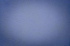 与小插图斑点的质量蓝色蛇皮纹理 图库摄影
