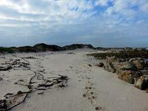 与小束的云彩的多岩石的海滩 库存图片