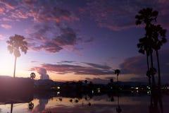 与小池塘和棕榈树的日落 免版税图库摄影