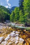 与小河和森林Th的美好的五颜六色的夏天风景 免版税库存图片