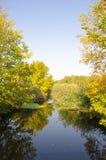 与小河的风景 库存图片