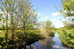 与小河的风景 库存照片