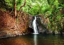 与小瀑布的热带雨林风景 老挝vang vieng 库存照片