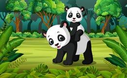 与小熊猫的熊猫在森林里 向量例证
