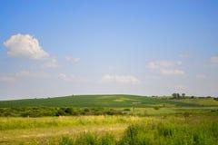 与小白色云彩的清楚的蓝天和绿色领域在夏天 库存图片