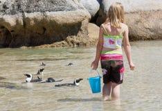 与小的企鹅的女孩戏剧在海滩 库存照片