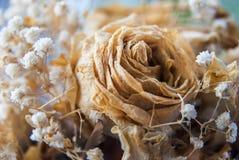 与小的白花的干死的罗斯婚礼花束 图库摄影