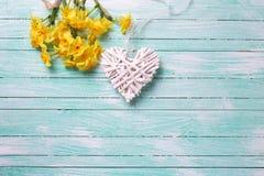 与小的黄色黄水仙花和白色12月的背景 库存照片