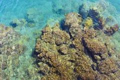 与小石头小卵石的海底在抽象背景的透明的水中 顶视图 库存照片