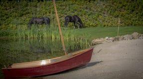 与小船的黑白花的马 免版税库存图片