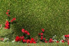 与小花的人为绿草 免版税库存图片