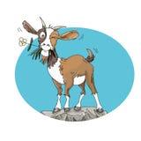 与小花的山羊在岩石幽默作家例证的嘴孩子的 免版税库存图片