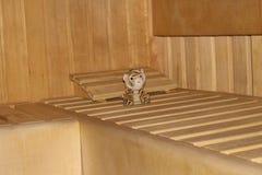 与小长毛绒老虎的蒸汽浴内部 库存图片