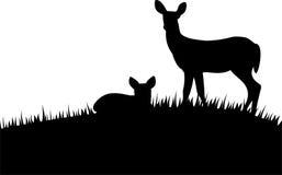 与小鹿的剪影母鹿 免版税库存照片