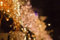 与小leds的美妙地发光的假日光 免版税库存照片