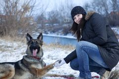 与少女的德国牧羊犬狗 可爱的纵向 库存照片