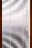 与尘土和蜘蛛网的白色百叶窗 通过在房子里面的百叶窗小条秋天早晨光 春天太阳给它的锂 免版税库存图片
