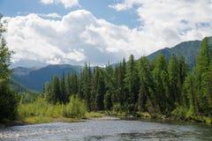 与山、森林和一条河的美好的夏天风景前面的 在背景的蓝色多云天空 免版税库存图片