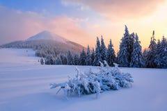 与山上面的在温暖的颜色的风景和日出 库存照片