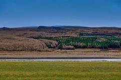 与山和五颜六色的树的冰岛风景在Reyk附近 免版税库存照片