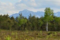 与山和多云天空的巴法力亚荒野 图库摄影