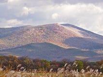 与山和多云天空的秋天横向 免版税库存照片
