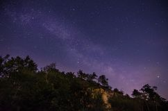 与山和树的满天星斗的天空 库存照片