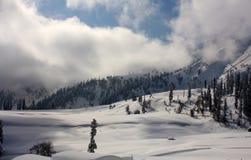 与山和树的雪scape在克什米尔 库存照片