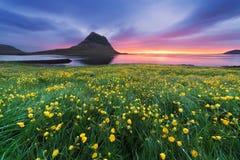 与山和海洋的美好的风景在冰岛 免版税库存图片