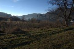 与山和forrest 1的国家风景 免版税图库摄影