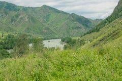 与山树和河的风景 免版税库存照片