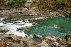 与山河和森林的秋天风景 免版税库存照片