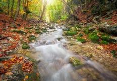 与山河的美好的秋天风景 免版税库存照片