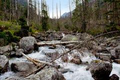 与山河的风景 免版税库存照片