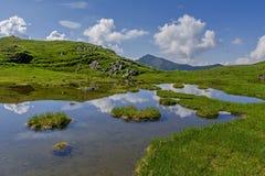 与山湖的夏天风景有漂浮的绿草海岛 免版税库存图片