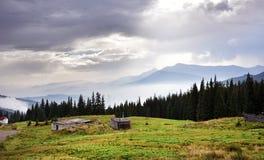 与山的云杉的中部的美好的风景 免版税库存图片