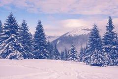 与山的冬天风景在黄昏期间的天际 库存照片