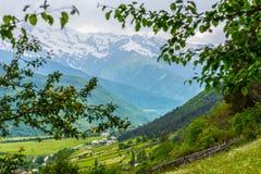 与山的土气风景在背景中 免版税图库摄影