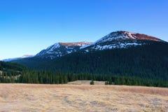 与山的横向 有烘干的草坪草,有绿色的森林 用小山的雪峰顶盖的 免版税库存图片