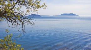 与山的海景在天际和树枝在前景 库存照片