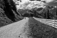 与山的黑白风景,云彩和草登陆 免版税库存照片