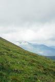 与山的绿色成长小山在背景 免版税库存照片