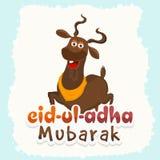 与山羊的Eid AlAdha庆祝 库存图片