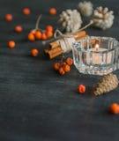 与山脉灰蜡烛和莓果的黑暗的圣诞节背景  美国五针松锥体 分支橡子 图库摄影