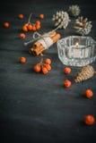 与山脉灰蜡烛和莓果的黑暗的圣诞节背景  美国五针松锥体 分支橡子 免版税库存图片